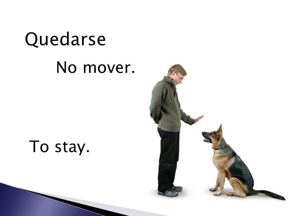 Quedarse No mover. To stay.