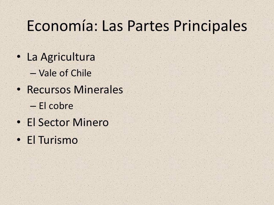 Economía: Las Partes Principales La Agricultura – Vale of Chile Recursos Minerales – El cobre El Sector Minero El Turismo