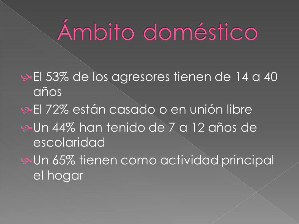 El 53% de los agresores tienen de 14 a 40 años El 72% están casado o en unión libre Un 44% han tenido de 7 a 12 años de escolaridad Un 65% tienen como actividad principal el hogar