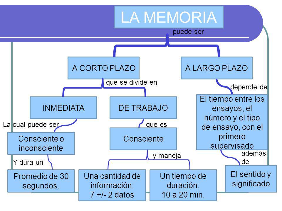 LA MEMORIA A CORTO PLAZOA LARGO PLAZO INMEDIATADE TRABAJO Consciente o inconsciente Promedio de 30 segundos. La cual puede ser Y dura un Consciente Un