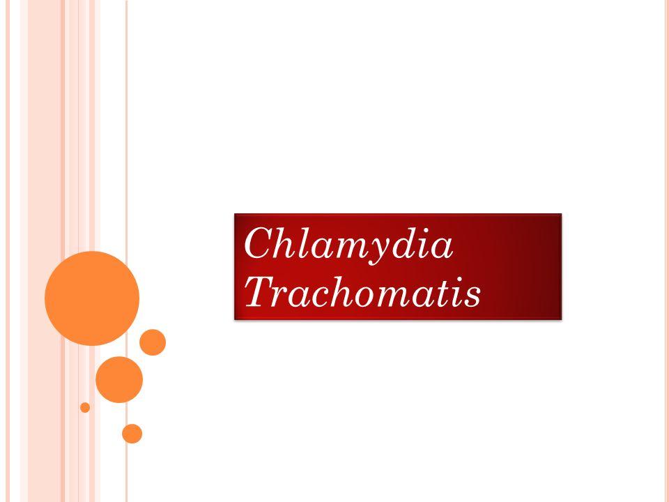 Chlamydia Trachomatis Chlamydia Trachomatis