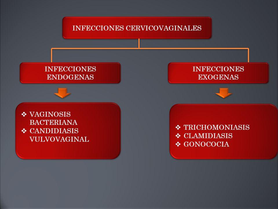  VAGINOSIS BACTERIANA  CANDIDIASIS VULVOVAGINAL  VAGINOSIS BACTERIANA  CANDIDIASIS VULVOVAGINAL  TRICHOMONIASIS  CLAMIDIASIS  GONOCOCIA  TRICHOMONIASIS  CLAMIDIASIS  GONOCOCIA INFECCIONES CERVICOVAGINALES INFECCIONES EXOGENAS INFECCIONES ENDOGENAS