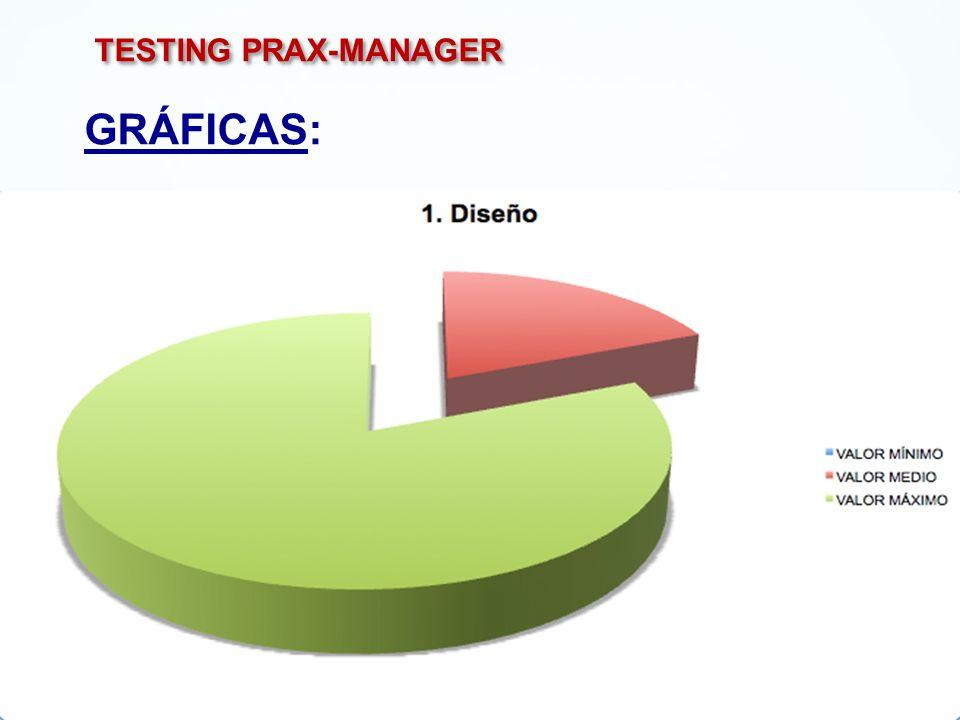 TESTING PRAX-MANAGER GRÁFICAS: