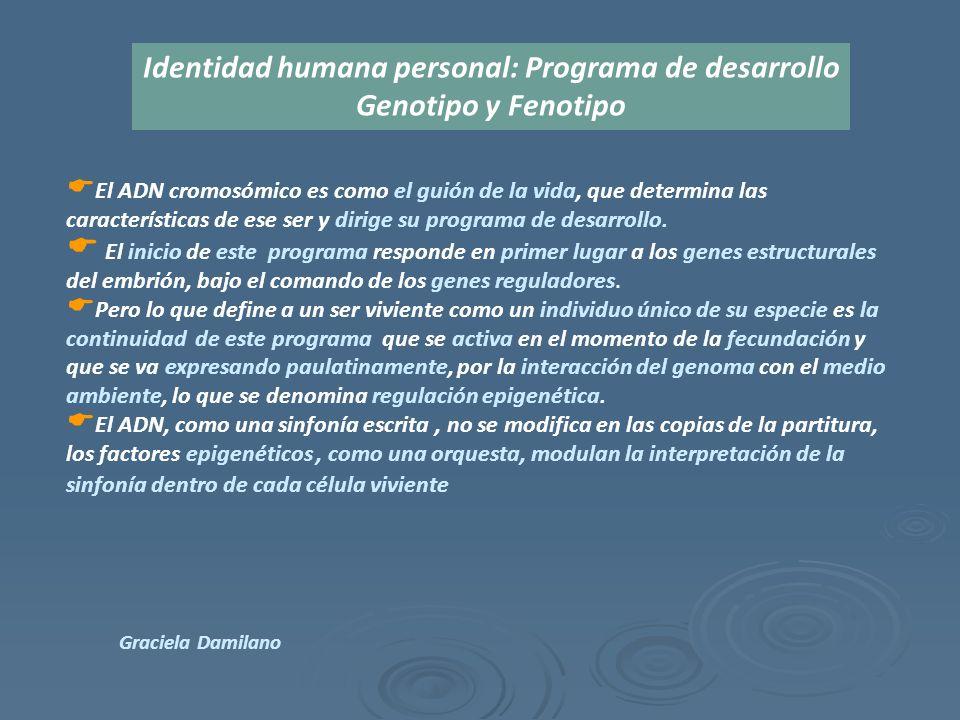  El ADN cromosómico es como el guión de la vida, que determina las características de ese ser y dirige su programa de desarrollo.