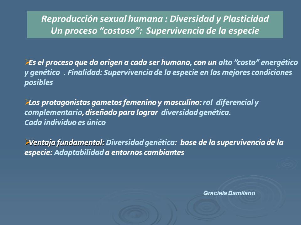  Es el proceso que da origen a cada ser humano, con un alto costo energético y genético.