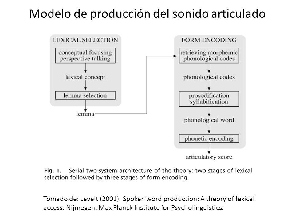 Asombroso Anatomía Y Fisiología De La Producción Del Habla Regalo ...