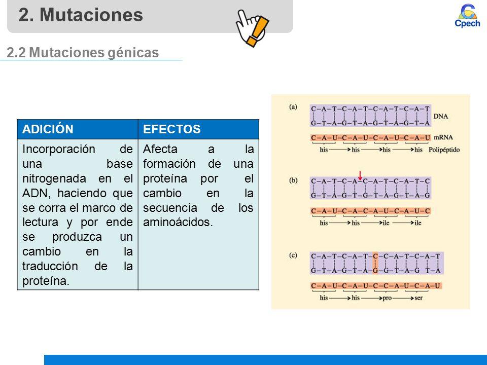 PPTCES012CB31-A16V1 Clase Clonación y mutaciones. Cáncer. - ppt ...
