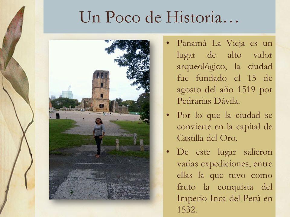 Un Poco de Historia… Panamá La Vieja es un lugar de alto valor arqueológico, la ciudad fue fundado el 15 de agosto del año 1519 por Pedrarias Dávila.