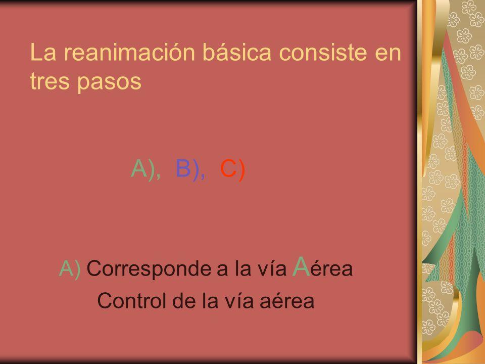 R eanimación C ardio- P ulmonar RCP. SISTEMA RESPIRATORIO. - ppt ...