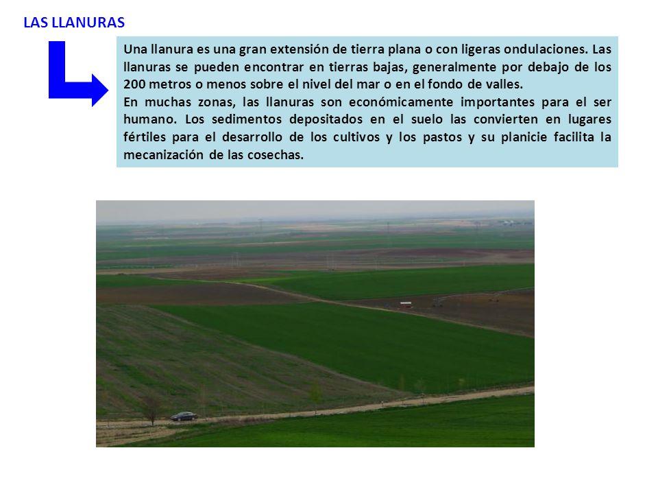 LAS LLANURAS Una llanura es una gran extensión de tierra plana o con ligeras ondulaciones.