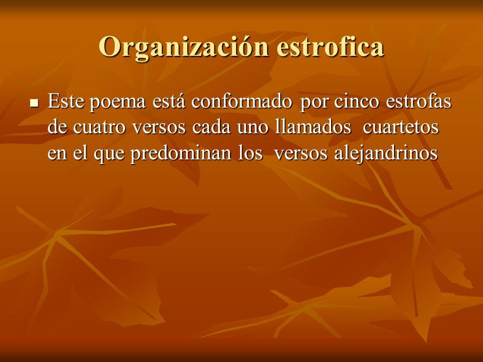 Organización estrofica Este poema está conformado por cinco estrofas de cuatro versos cada uno llamados cuartetos en el que predominan los versos alejandrinos Este poema está conformado por cinco estrofas de cuatro versos cada uno llamados cuartetos en el que predominan los versos alejandrinos