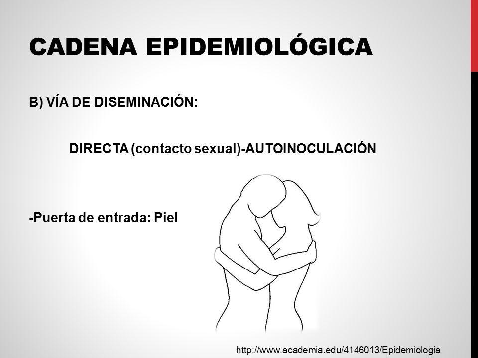 CADENA EPIDEMIOLÓGICA B) VÍA DE DISEMINACIÓN: DIRECTA (contacto sexual)-AUTOINOCULACIÓN -Puerta de entrada: Piel http://www.academia.edu/4146013/Epidemiologia