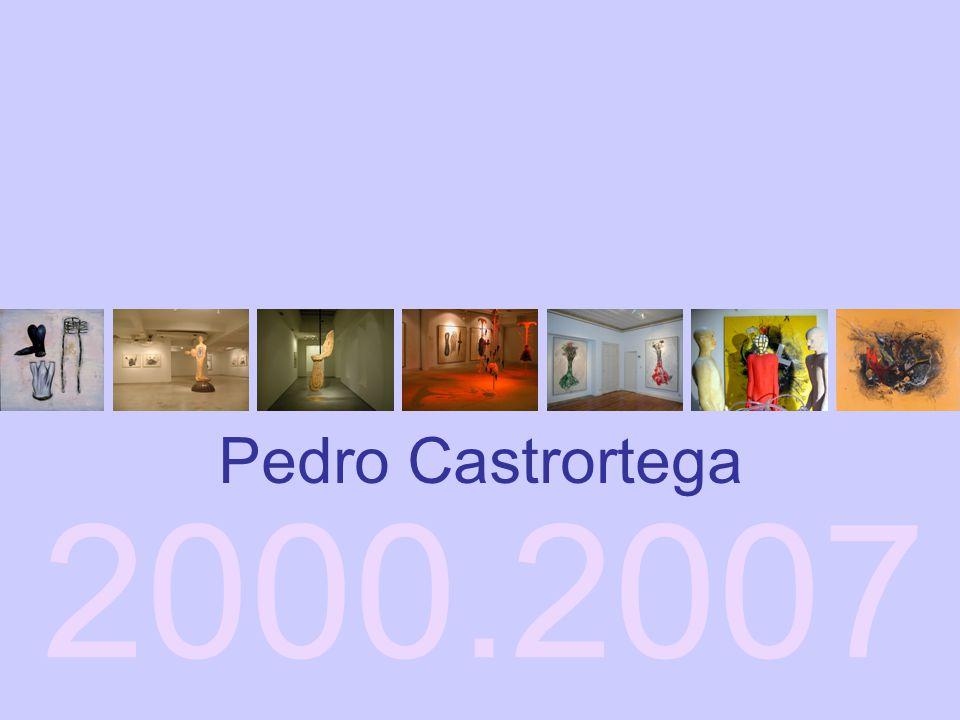 2000.2007 Pedro Castrortega