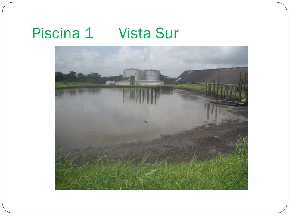 Piscina 1Vista Sur