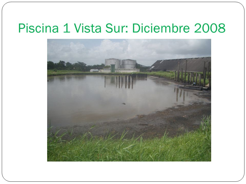 Piscina 1 Vista Sur: Diciembre 2008