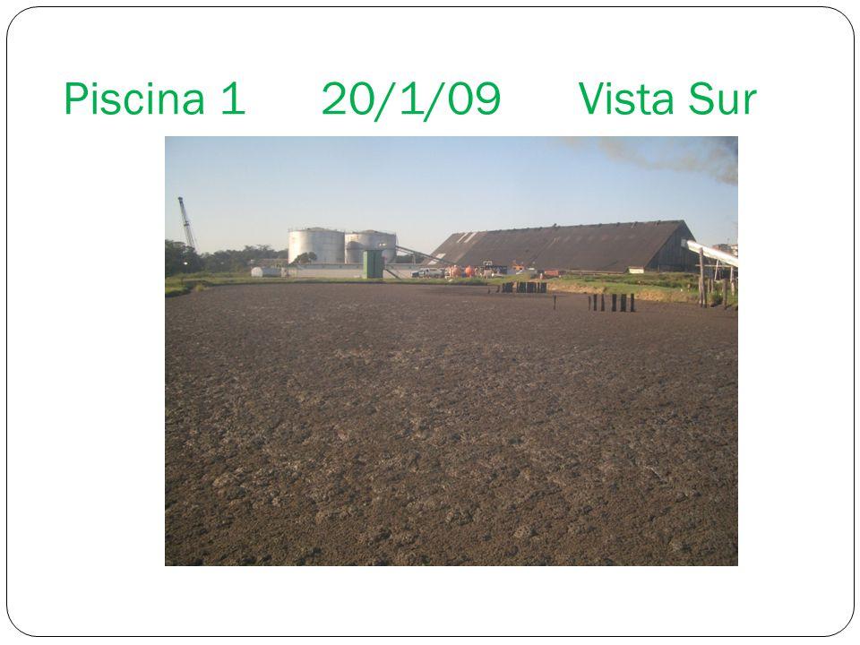 Piscina 1 20/1/09 Vista Sur