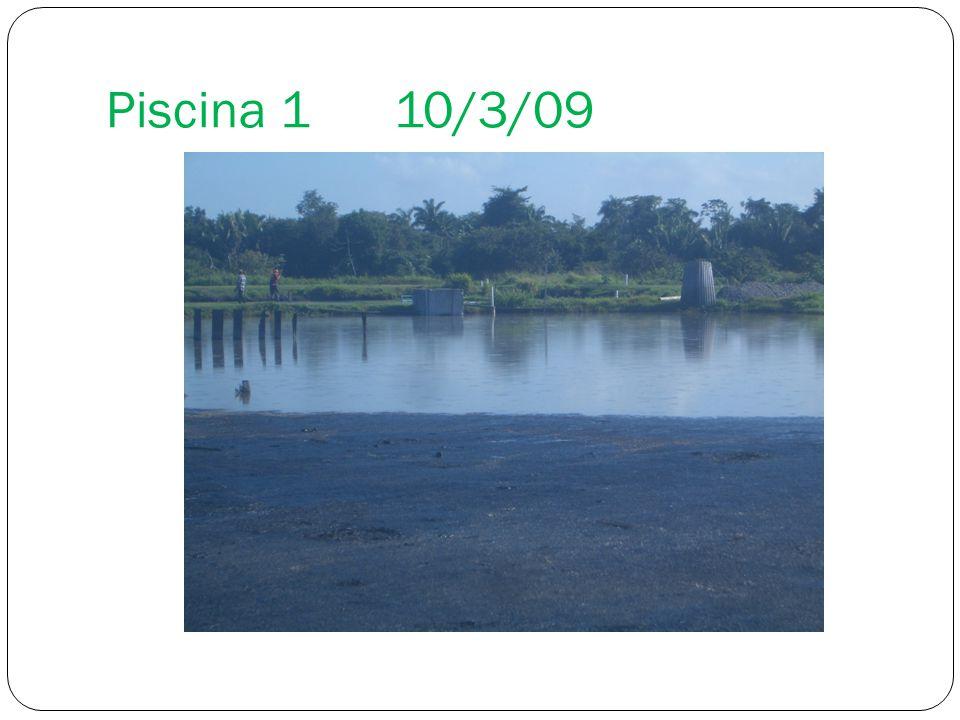 Piscina 110/3/09