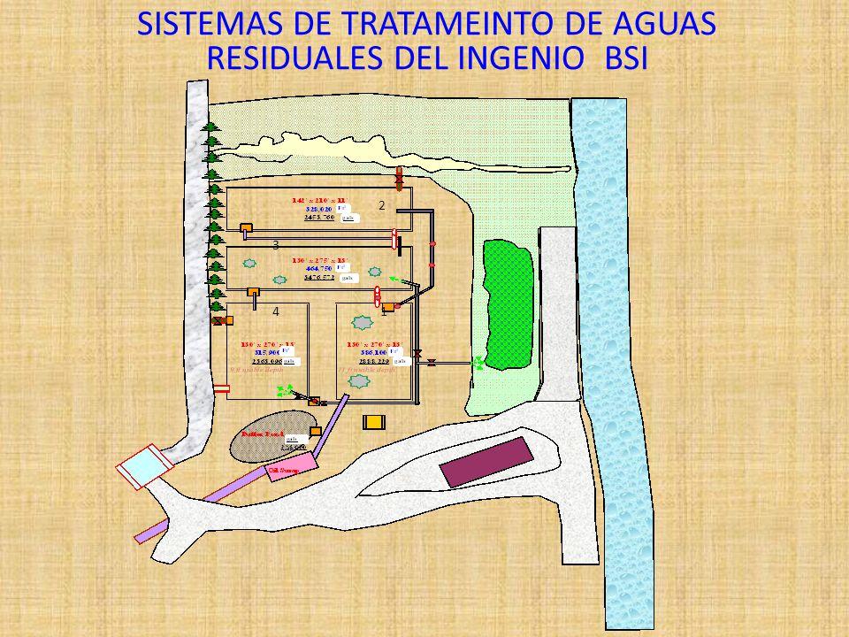SISTEMAS DE TRATAMEINTO DE AGUAS RESIDUALES DEL INGENIO BSI 1 2 3 4