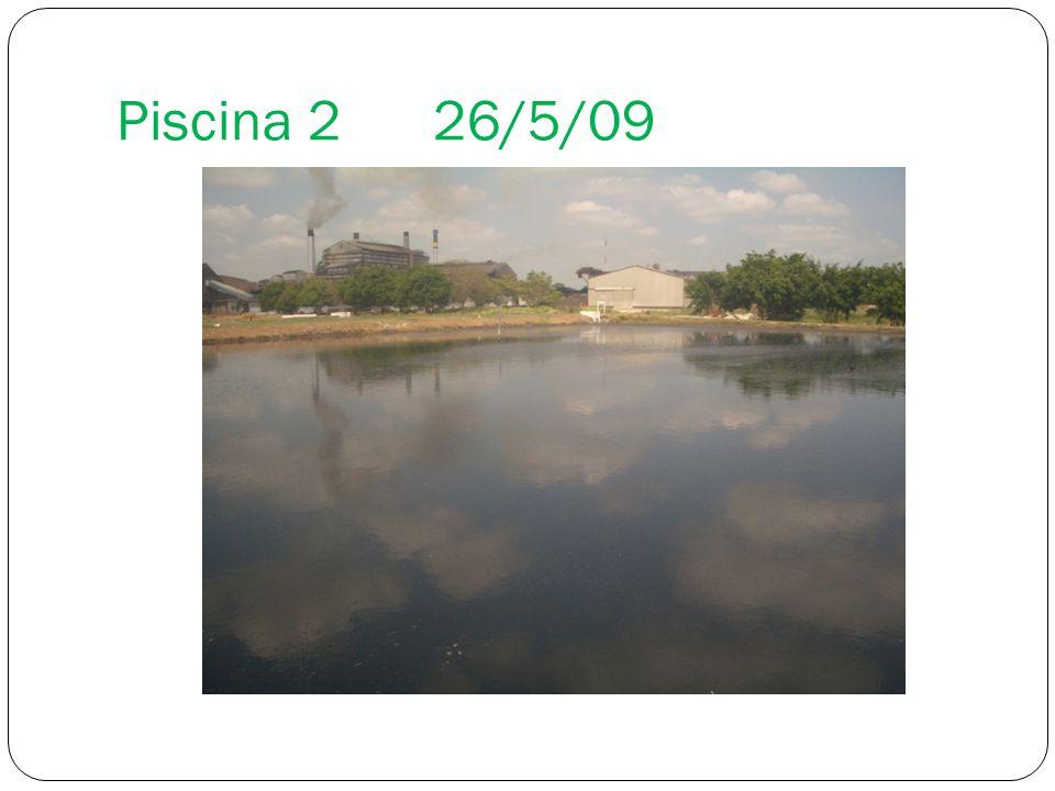 Piscina 226/5/09