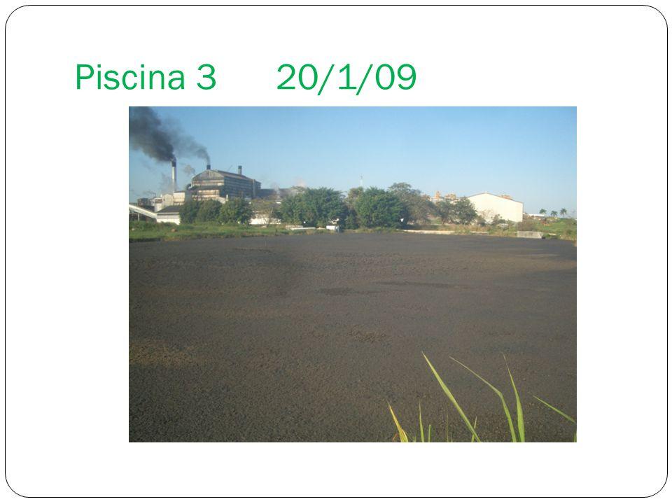 Piscina 320/1/09