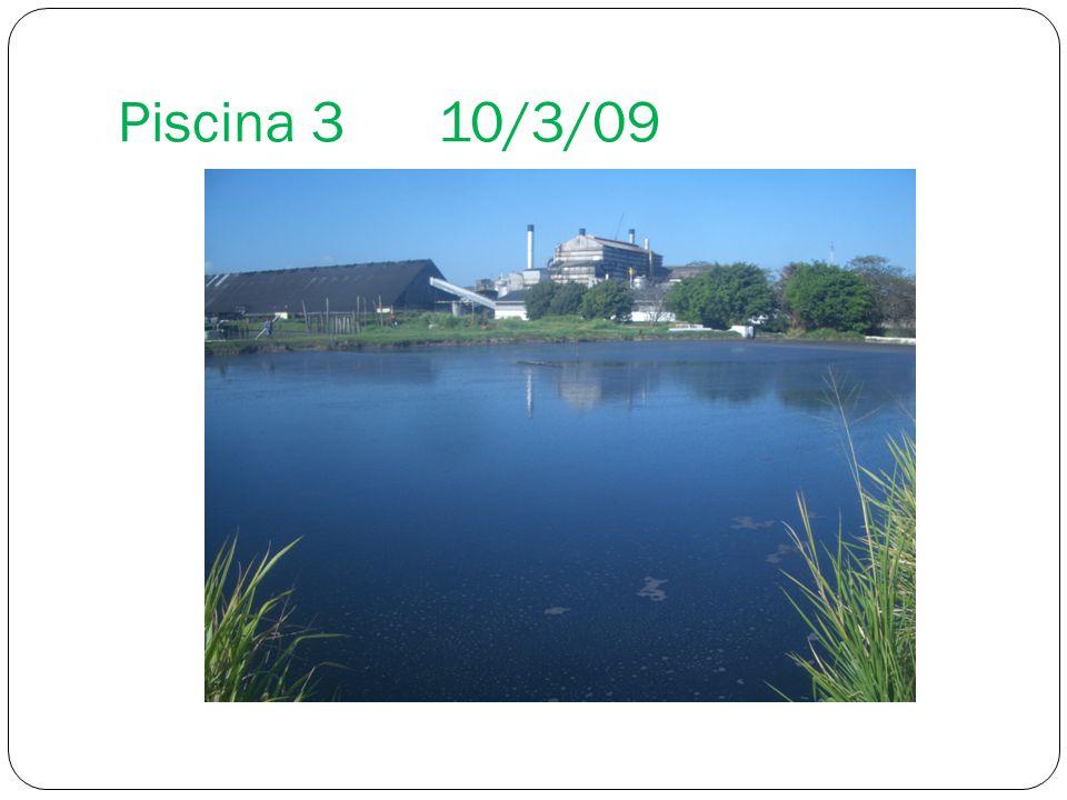 Piscina 310/3/09