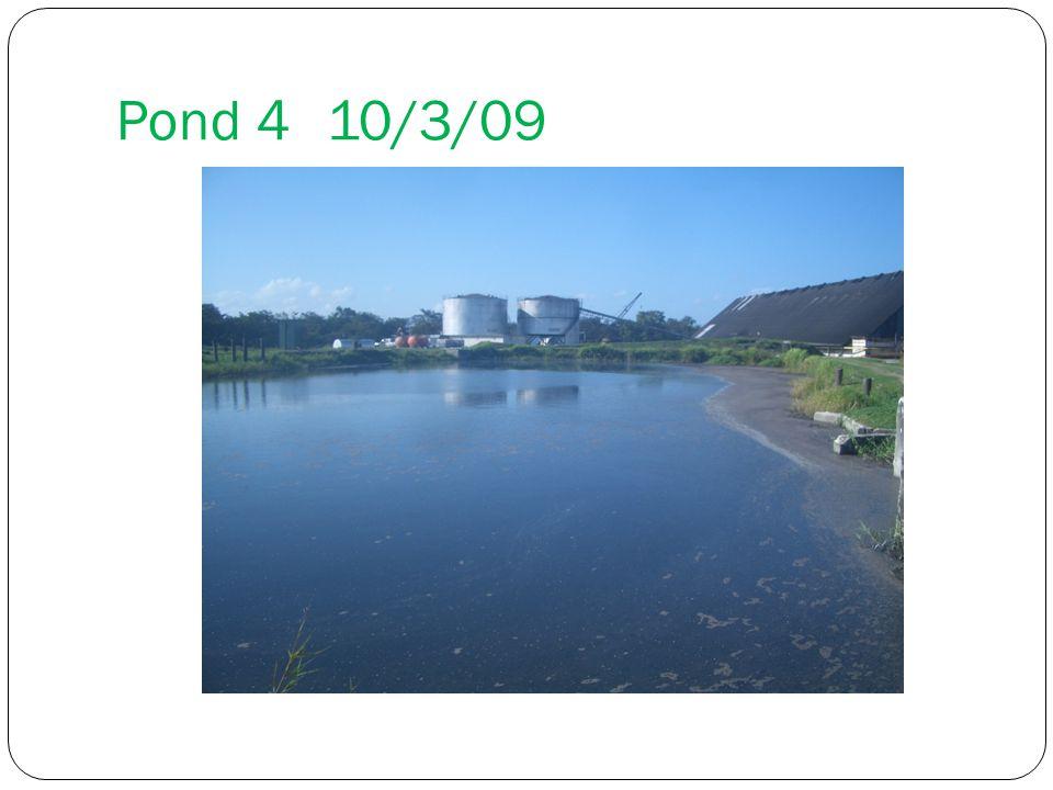 Pond 410/3/09