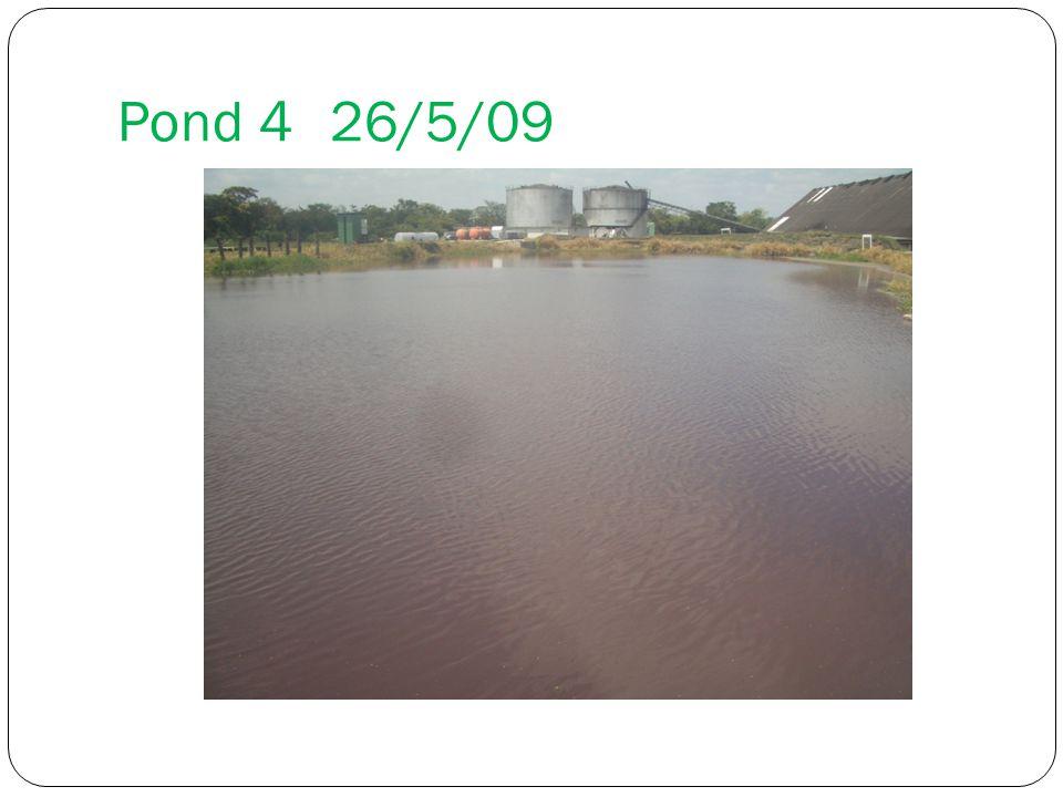 Pond 426/5/09