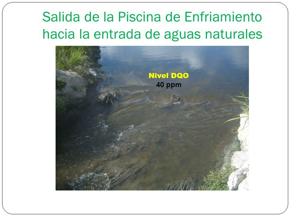 Salida de la Piscina de Enfriamiento hacia la entrada de aguas naturales Nivel DQO 40 ppm
