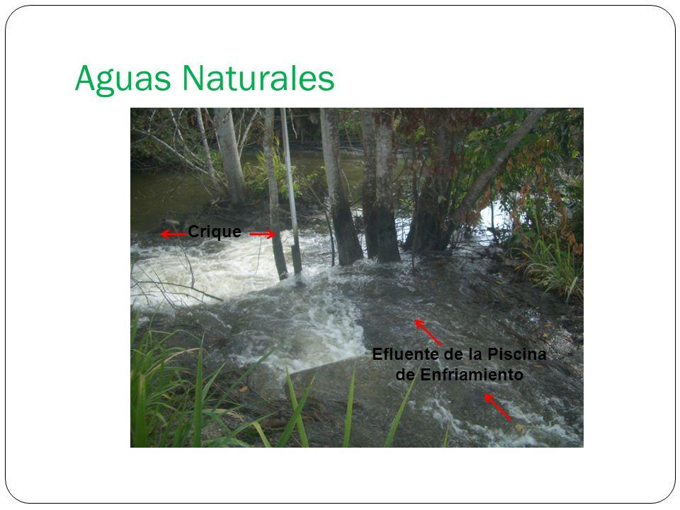 Aguas Naturales Crique Efluente de la Piscina de Enfriamiento