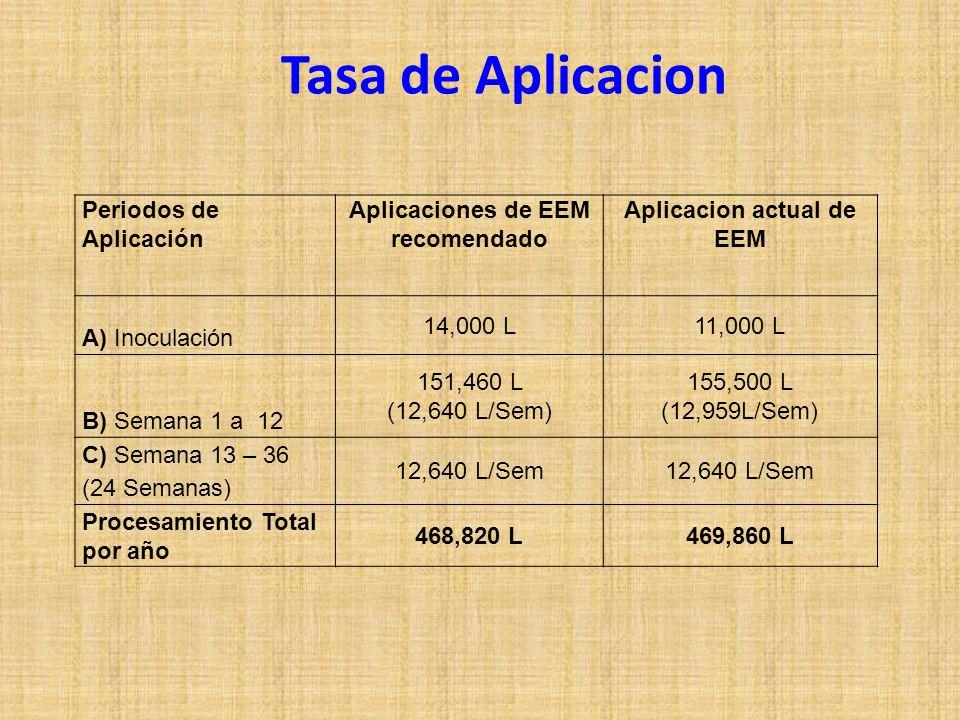 Tasa de Aplicacion Periodos de Aplicación Aplicaciones de EEM recomendado Aplicacion actual de EEM A) Inoculación 14,000 L11,000 L B) Semana 1 a 12 151,460 L (12,640 L/Sem) 155,500 L (12,959L/Sem) C) Semana 13 – 36 (24 Semanas) 12,640 L/Sem Procesamiento Total por año 468,820 L469,860 L