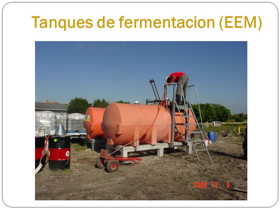 Tanques de fermentacion (EEM)