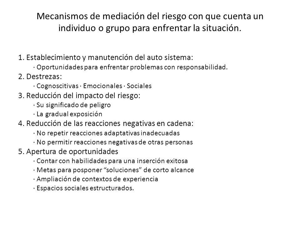 Mecanismos de mediación del riesgo con que cuenta un individuo o grupo para enfrentar la situación. 1. Establecimiento y manutención del auto sistema: