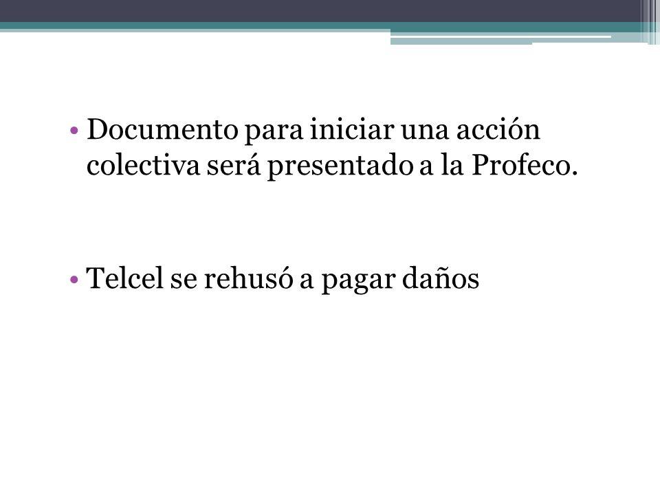 Documento para iniciar una acción colectiva será presentado a la Profeco.