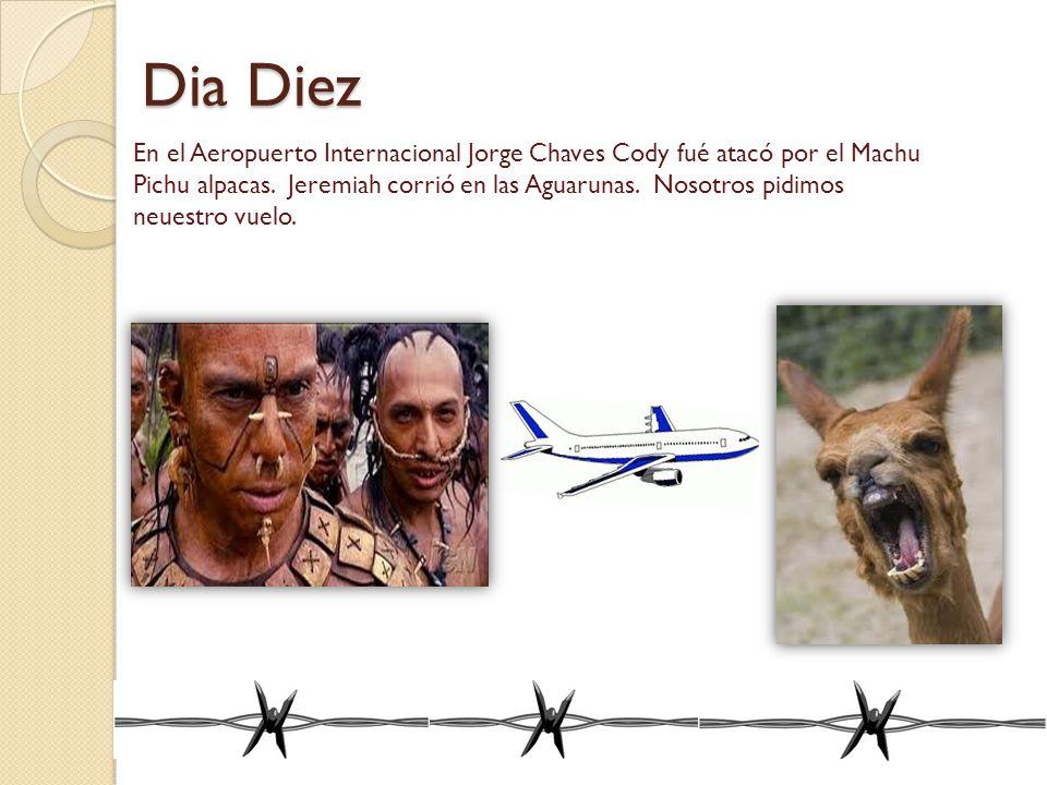 Dia Diez En el Aeropuerto Internacional Jorge Chaves Cody fué atacó por el Machu Pichu alpacas. Jeremiah corrió en las Aguarunas. Nosotros pidimos neu