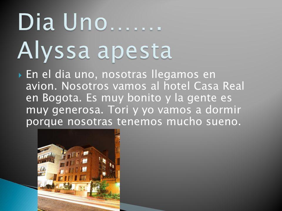 En el dia uno, nosotras llegamos en avion. Nosotros vamos al hotel Casa Real en Bogota. Es muy bonito y la gente es muy generosa. Tori y yo vamos a do