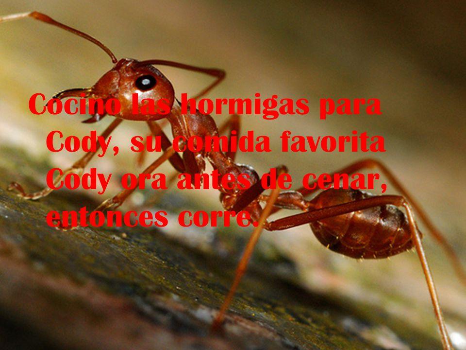 Cocino las hormigas para Cody, su comida favorita Cody ora antes de cenar, entonces corre.