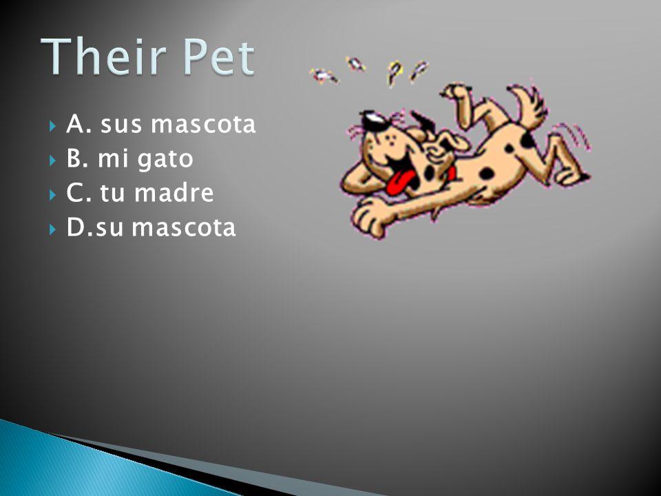 A. sus mascota B. mi gato C. tu madre D.su mascota