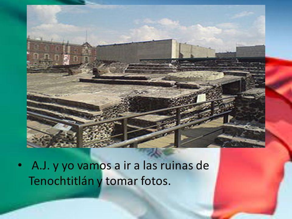 A.J. y yo vamos a ir a las ruinas de Tenochtitlán y tomar fotos.