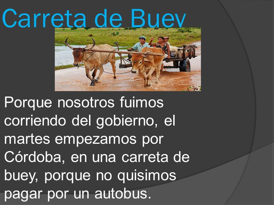 Carreta de Buey Porque nosotros fuimos corriendo del gobierno, el martes empezamos por Cόrdoba, en una carreta de buey, porque no quisimos pagar por un autobus.