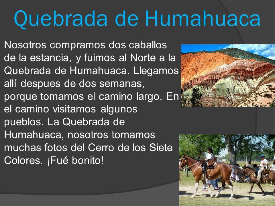 Quebrada de Humahuaca Nosotros compramos dos caballos de la estancia, y fuimos al Norte a la Quebrada de Humahuaca. Llegamos allí despues de dos seman
