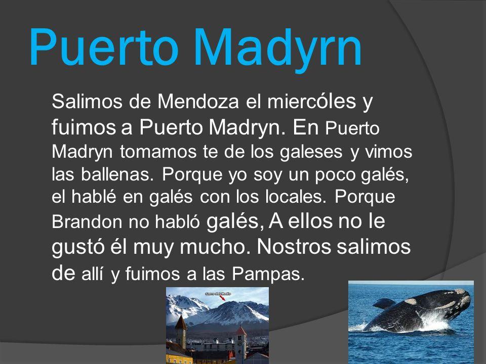 Puerto Madyrn Salimos de Mendoza el mierc όles y fuimos a Puerto Madryn. En Puerto Madryn tomamos te de los galeses y vimos las ballenas. Porque yo so