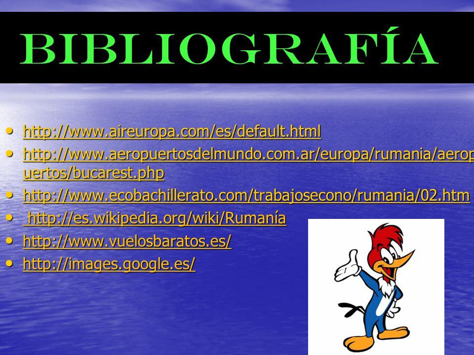BIBLIOGRAFÍA BIBLIOGRAFÍA http://www.aireuropa.com/es/default.html http://www.aireuropa.com/es/default.html http://www.aireuropa.com/es/default.html h
