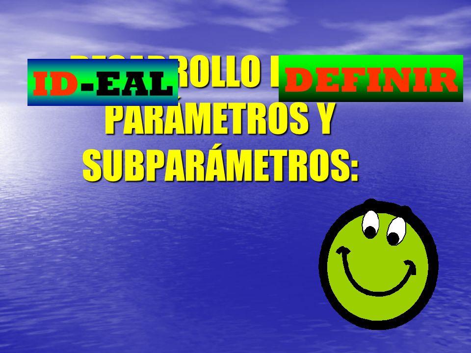 DESARROLLO DE LOS PARÁMETROS Y SUBPARÁMETROS: ID-EAL DEFINIR