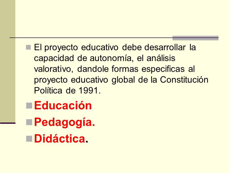 El proyecto educativo debe desarrollar la capacidad de autonomía, el análisis valorativo, dandole formas especificas al proyecto educativo global de l