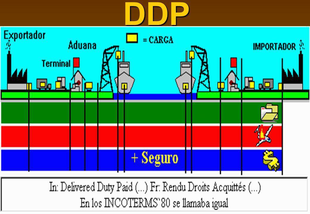 39DDP