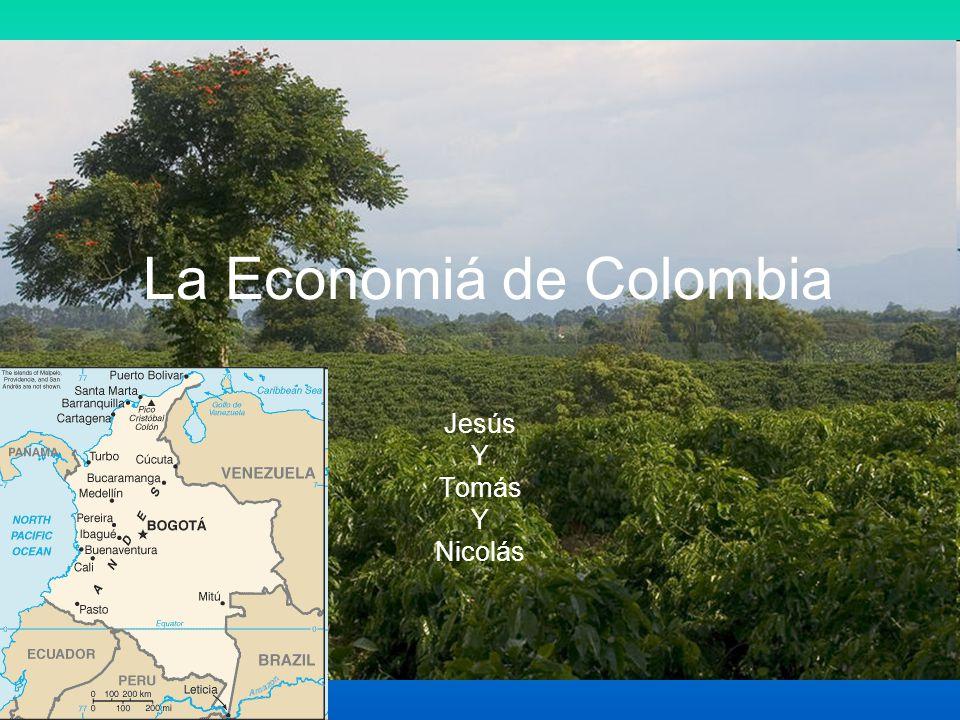 Economía Básica Producto Interior Bruto de $407.2 mil million Indice de desempleo es 11.8% Exportaciones: petróleo, café, carbón, níquel, esmeraldas, ropa, plátanos, flores de corte, arroz