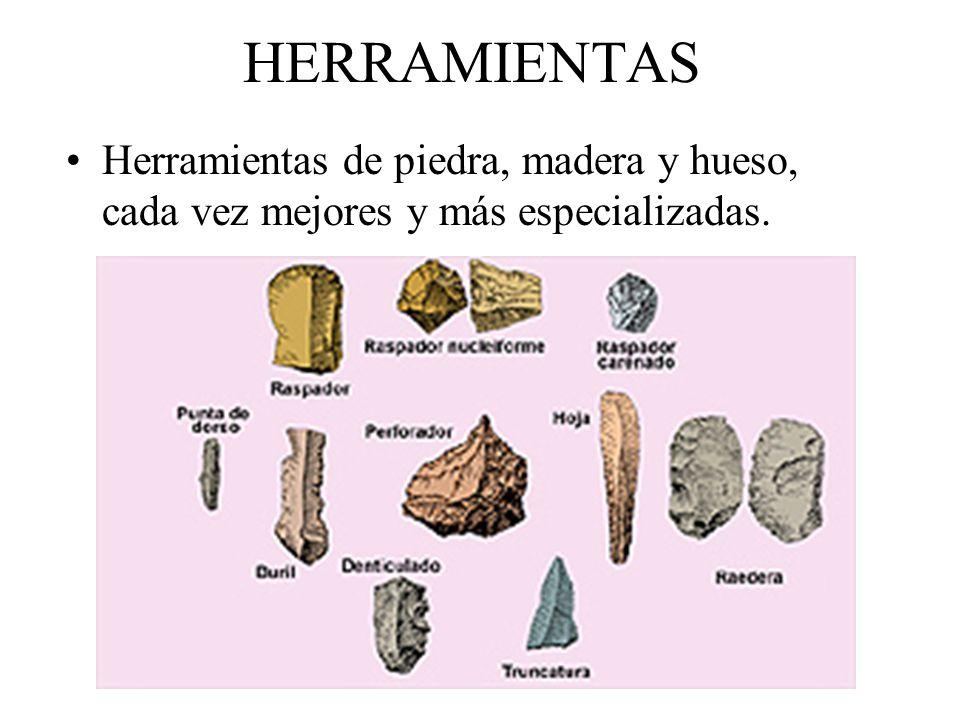 HERRAMIENTAS Herramientas de piedra, madera y hueso, cada vez mejores y más especializadas.