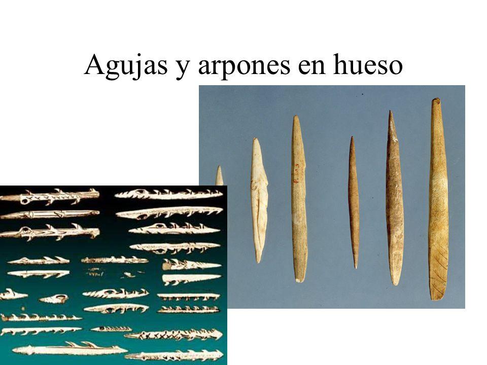 La sociedad paleolítica Los individuos se agrupaban en tribus de 20- 40 personas.