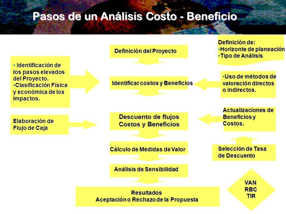 Pasos de un Análisis Costo - Beneficio Identificación de Identificación de los pasos elevados del Proyecto. Clasificación FísicaClasificación Física y