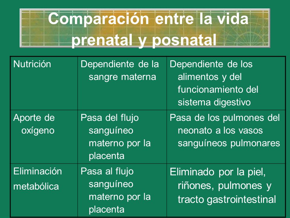 Comparación entre la vida prenatal y posnatal Nutrición Dependiente de la sangre materna Dependiente de los alimentos y del funcionamiento del sistema
